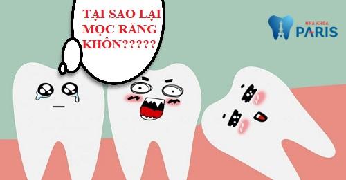 Tại sao lại mọc răng khôn?