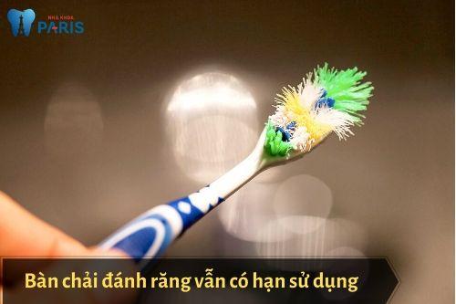 bàn chải đánh răng bao lâu thay 1 lần