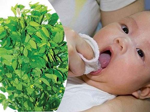 Đánh tưa lưỡi bằng rau ngót